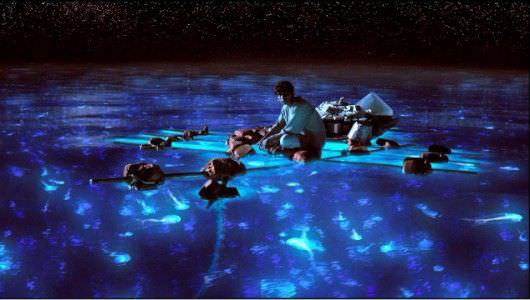 Pi takes in bioluminescent sea