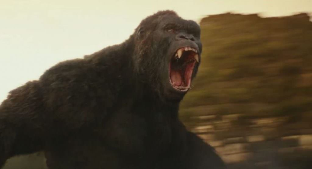 Before he faces off against Godzilla, here's Kong in