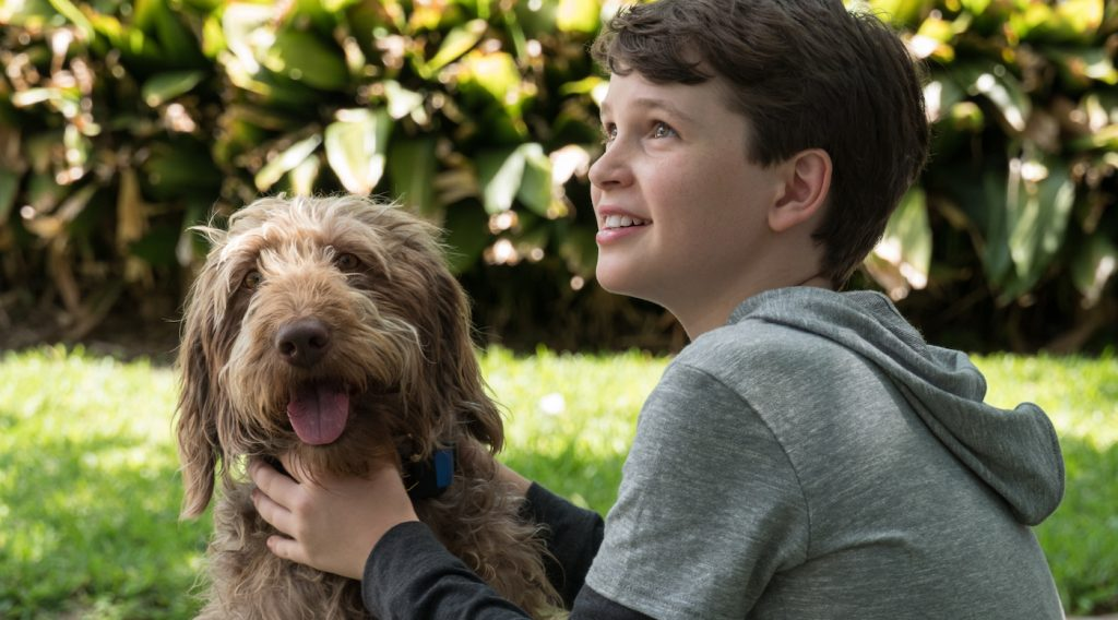 Gabriel Bateman in 'Think Like A Dog.' Courtesy Lionsgate.