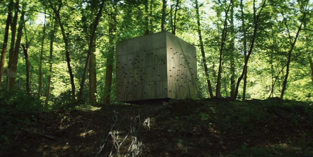 "The Cube in ""Lapsis."" Courtesy Noah Hutton."